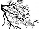 Easy Cherry Blossom Drawing Sakura Bloom Drawing Lotus Blossom Coloring Page Full