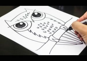 Easy Drawing for 6 Class How to Draw An Owl Youtube