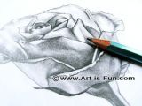 Easy Drawing for Class 12 Drawing Lessons Easy Step by Step Drawing Tutorials Teach You How