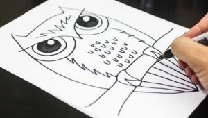 Easy Drawing Ideas for 9 Year Olds How to Draw An Owl Youtube