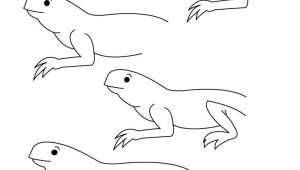Easy Drawing Lizard Here You Can Find some New Design About How to Draw A Lizard Step