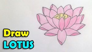 Easy Drawing Lotus How to Draw Lotus Flower Step by Step Easy In This Video We are