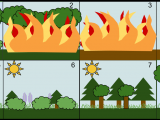 Easy Drawing Of Ecosystem Secondary Succession Wikipedia