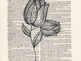 Easy Drawing Of Flower Garden Description Of This Print An Elegant and Simple Flower Pencil