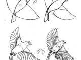 Easy Drawing Of Uttarayan 306 Best Drawing Birds Images Pencil Drawings Bird Drawings