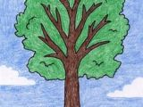 Easy Drawings for 5th Class 156 Best Drawing Trees Images In 2019 Drawing Trees Tree Drawings
