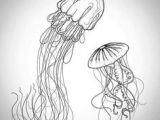 Easy Drawings Jellyfish 53 Best Jellyfish Drawing Images Marine Life Ocean Creatures