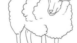 Easy Drawings Lamb 82 Best Lambs Sheep Images Sheep Drawing S Drawings