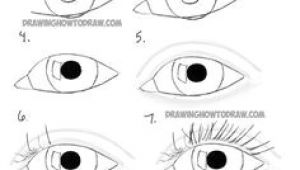 Easy Drawings Of Lion Eyes 156 Best Easy Drawings Sketches Images In 2019 Draw Drawings