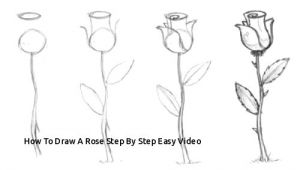 Easy Drawings Of Roses Step by Step How to Draw A Rose Step by Step Easy Video Easy to Draw Rose Luxury