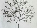 Easy Drawings Of Trees Pin by Sheila Lopez On Doodles Drawings Painting Art Drawings