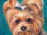 Easy Drawings Of Yorkies 20 Best Yorkie Painting Images Doggies Yorkies Dog Paintings