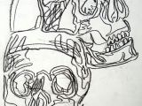 Easy How to Draw A Skull Basic Drawing 1 Continuous Contour Skulls Basic Drawing