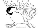 Easy Jungle Drawings How to Draw A Bird Step by Step Easy with Pictures Birds