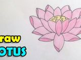 Easy Lotus Drawing How to Draw Lotus Flower Step by Step Easy In This Video We
