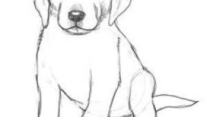Easy Pet Drawings 101 Best Drawings Of Dogs Images Pencil Drawings Pencil Art