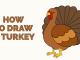 Easy Thanksgiving Drawings How to Draw A Turkey Really Easy Drawing Tutorial Easy