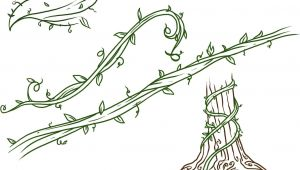 Easy Vine Drawings Drawings Of Flowers Leaves and Vines to Draw Vines Step by Step