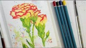 Easy Watercolor Pencil Drawings Carnation Flower Real Time Beginner Watercolor Pencil