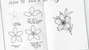 Easy Way to Draw A Flower How to Draw Easy Flower Doodles for Bullet Journal Spreads