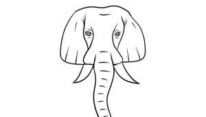Elephant Eyes Drawing Easy Draw An Elephant Easy Cartoon Drawings Elephant Images
