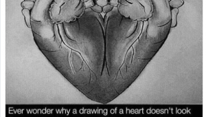 Ever Wonder why A Drawing Of A Heart 2 Hrs Ever Wonder why A Drawing Of A Heart Doesn T Look Like An