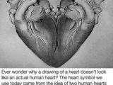 Ever Wonder why A Drawing Of A Heart 24 Best Art Images On Pinterest Drawings Draw and Drawing S