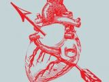 Ever Wonder why A Drawing Of A Heart Draw A Human Heart My Art Institute Drawings Human Heart Human