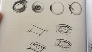 Eye Structure Drawing Easy Eye Realistic Tutorial T A E C Ae In 2019 Drawing