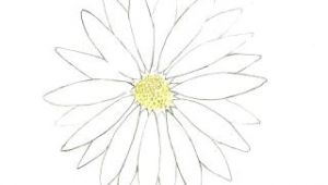 Flower Drawing Tumblr Easy Flower Drawing Easy Flowers Drawingchallenge Flower Drawings