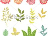 Graphic Drawings Of Flowers Hand Drawn Botany Set Of Flowers and Leaves Vector Stock