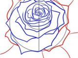 Guided Drawing Of A Rose 100 Best How to Draw Tutorials Flowers Images Drawing Techniques