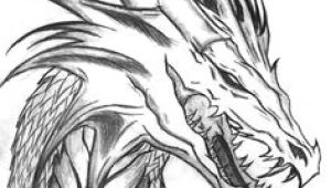 Hard Drawings Of Dragons 316 Best Dragon Head Drawing Images Dragon Art Dragon Head