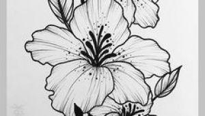 Hibiscus Drawing Easy Ink or Line Drawing Beautiful Flower Drawings Drawings