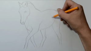 How to Draw A Horse Step by Step Easy How to Draw A Horse Step by Step In 2019 Creature Drawings