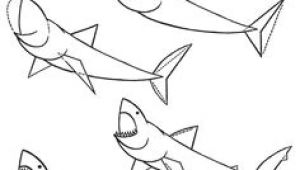 How to Draw A Megalodon Step by Step Easy 59 Best Shark Drawings Images Shark Drawing Shark Drawings