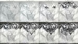 How to Draw A Tiger Face Easy Easy Realistic Tiger Drawings Tigers Drawing and Painting