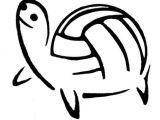 How to Draw A Volleyball Easy This Will Probably Be My Next Tattoo Turtle Volleyball