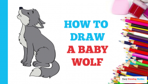 How to Draw A Wolf Easy Step by Step How to Draw A Baby Wolf Wolf Drawing Easy Easy Drawings