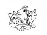 How to Draw Animal Jam Fox Animal Jam Coloring Pages Fox Coloring Pages Animal Jam