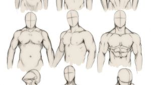 How to Draw Anime Muscles How to Draw the Human Body Study Male Body Types Comic