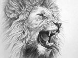 How to Draw Cool Animals Animals for Cool Lion to Draw Mens Lion Tattoo Lion