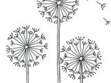 Is Drawing Flowers Haram Kamal Chheda Kamalchheda On Pinterest