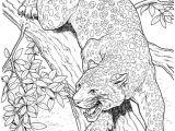 Jaguar Animal Drawing 10 Best Jaguar Coloring Pages for Little Ones Cat Coloring