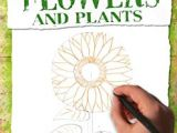 L Drawing Book How to Draw Plants the Techniques Of Botanical Illustration Art