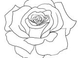Line Drawing Of Flowers Roses Flower Outline Tattoos Rose Outline Tattoo Stencil Line Art
