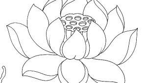 Line Drawing Of Lotus Flower Lotus Flower Drawing Outline at Living Room In 2019 Flower