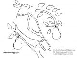 Number 0 Drawing Number 0 Coloring Page Luxury Ic Book Drawing Awesome Ic Book
