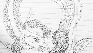 Old Drawings Of Dragons Young 11 Year Olds Dragon Drawing Young Artist Drawings