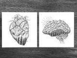 Pen Drawing Of A Heart 60 Best Pen and Ink Images Doodles Sketches Drawings